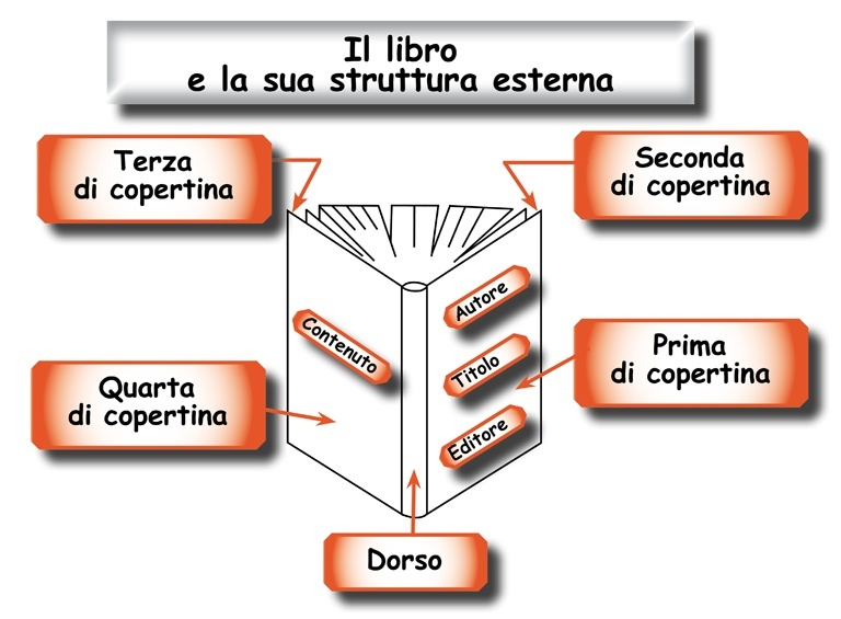 Struttura esterna del libro